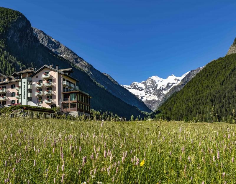 Travel Precious Hotel bellevue